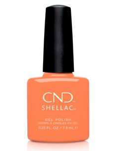 SHELLAC CATCH OF THE DAY NAUTICAL SUMMER 7,3ml CND