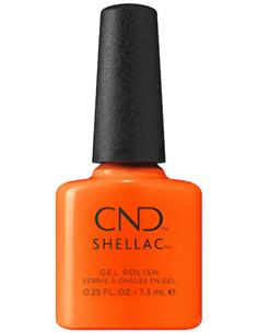 SHELLAC POPSICLE PICNIC SUMMER CITY CHIC 7,3ml CND