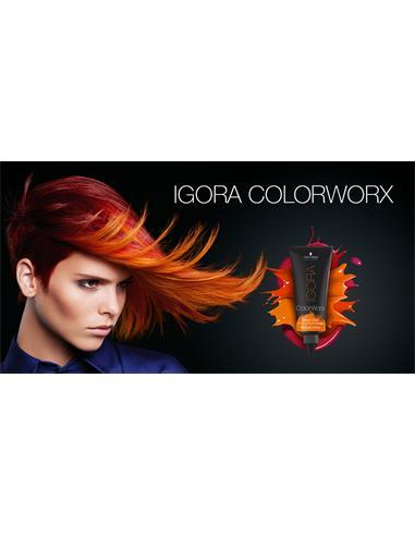 EASEL COLOR IGORA COLORWORX 2247198 6/17 SCH